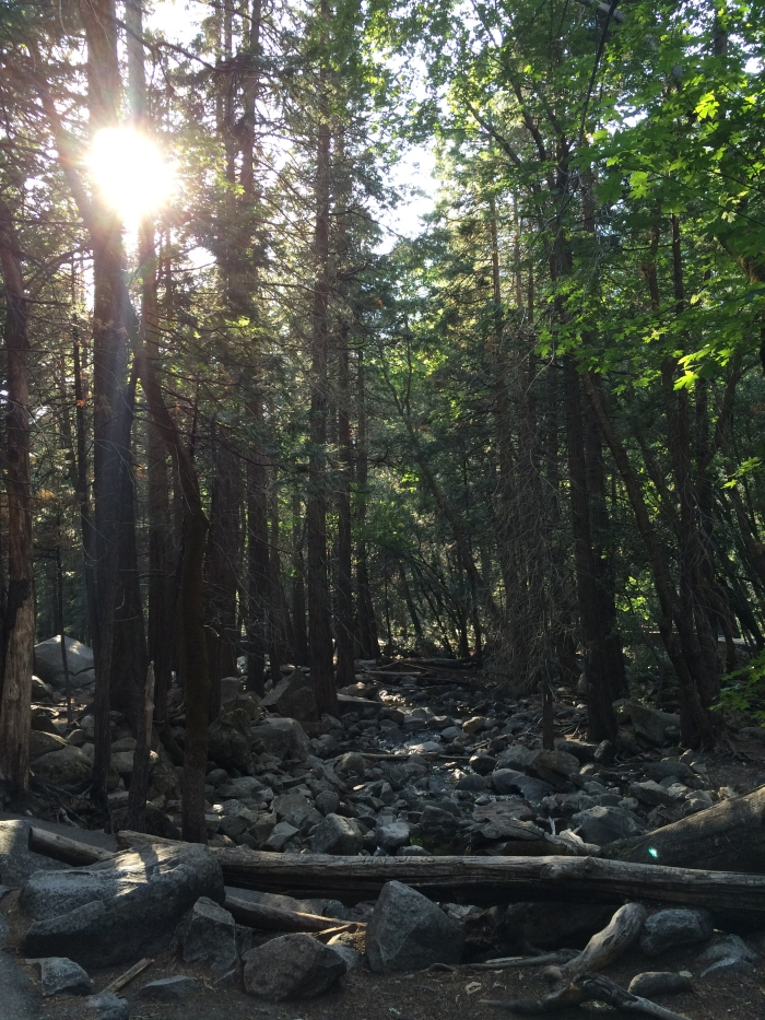 Yosemite Trail
