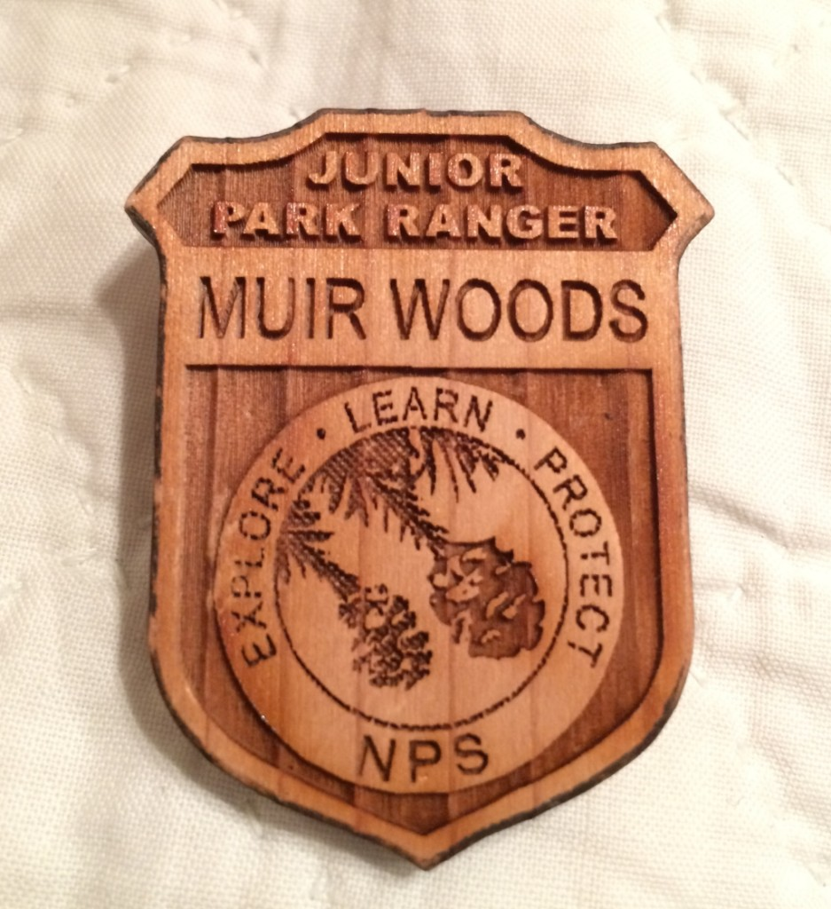 Muir WoodsIMG_3887