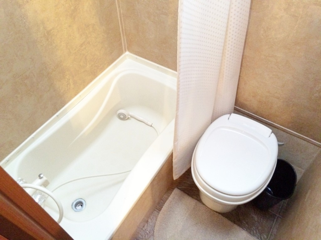 Shower Mod20151226-01