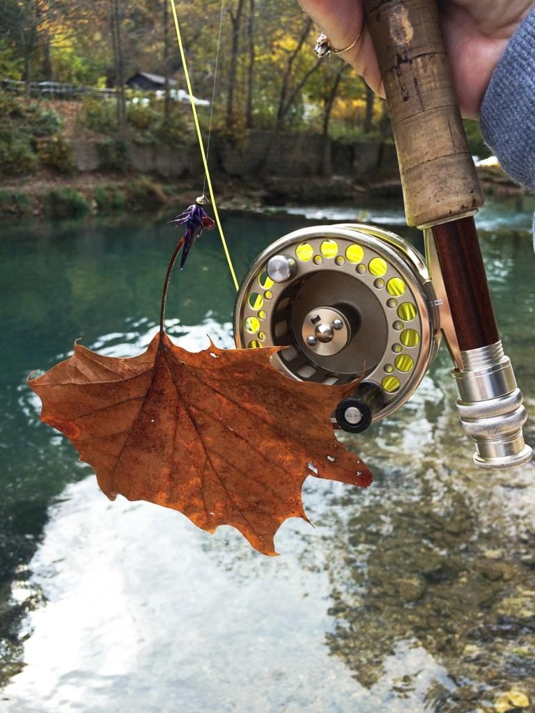 Roaring River20151227-03