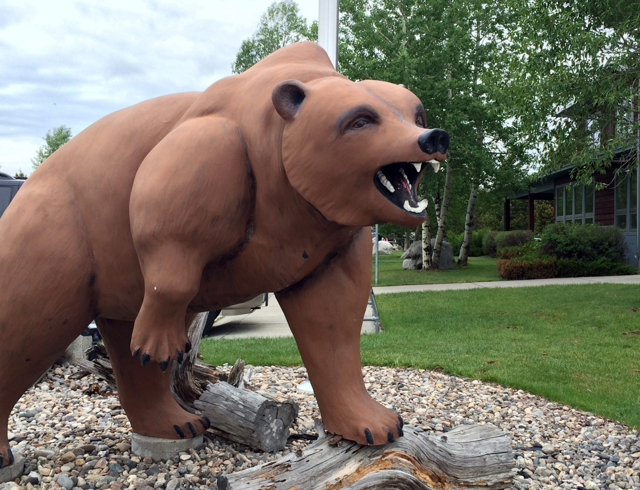 Yellowstone Part V: Campground Review of Yellowstone Grizzly