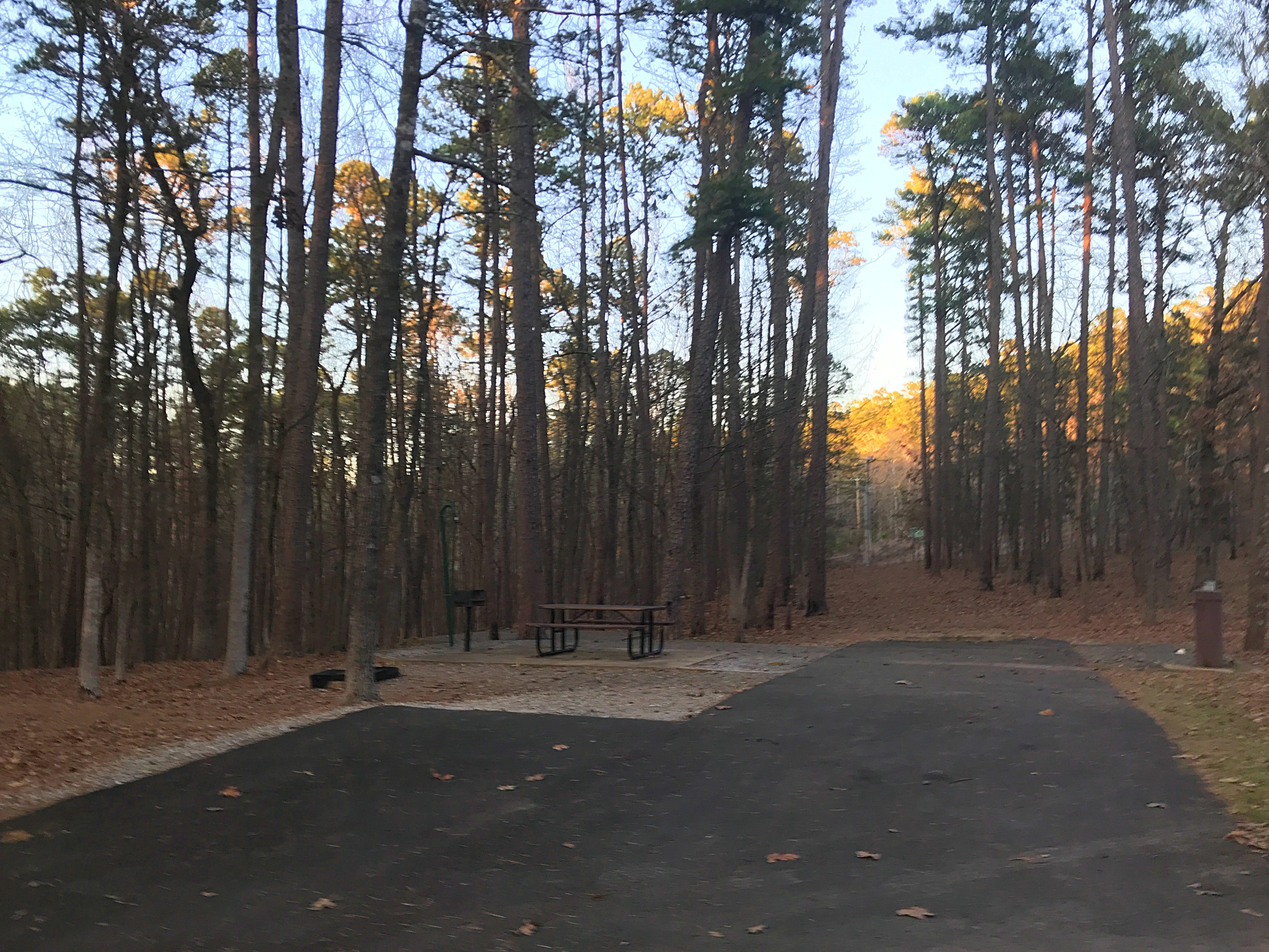 Campground Review: Lake Ouachita State Park Near Hot ...