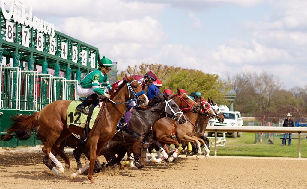 Thoroughbred racing horses take off at Oaklawn Park in Hot Springs, AR