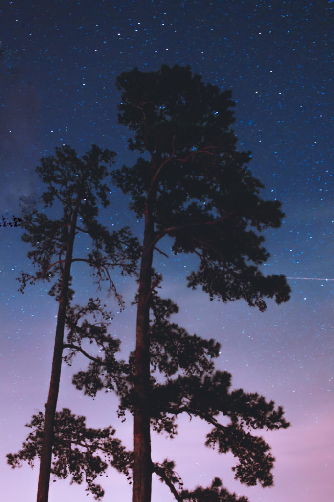 The night sky over Lake Ouachita at Lake Ouachita State Park in Arkansas